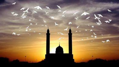 """Photo of الإسلام الذي يجب أن نعرفه """"1"""""""
